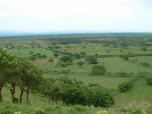 Paysage agricole de San Domingo