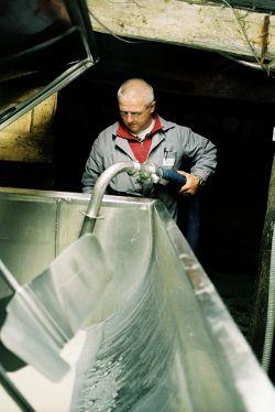 Collecteur de lait au travail