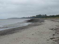 La plage à Priwall, anciennement coupée par la frontière