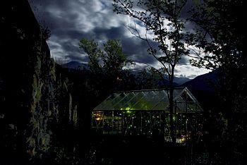 """Erik Samakh, """"Serre de nuit"""", embrun 2010, juin à novembre 2010."""