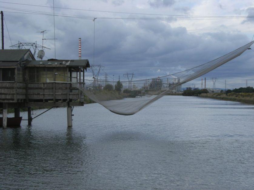 Superposition d'usages (pêche, industries) dans des zones humides côtières près de Ravenna (région Emilie-Romagne)