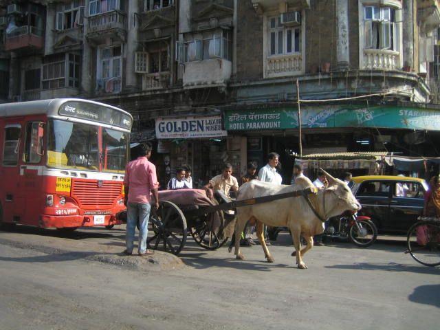 Bombay 2011