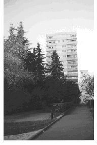 Un ensemble d'habitat collectif, bâti dans les années soixante-dix dans le cadre de la politique de rénovation, autour d'un jard