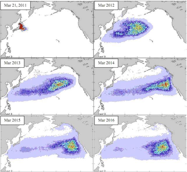 Simulation du trajet maritime des déchets japonais post-tsunami