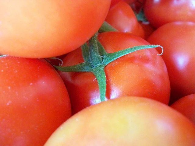 Spéciale Gastronomie Durable - On va déguster - 2011