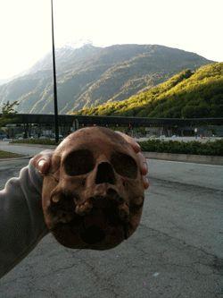 Crânes de Randazzo 2