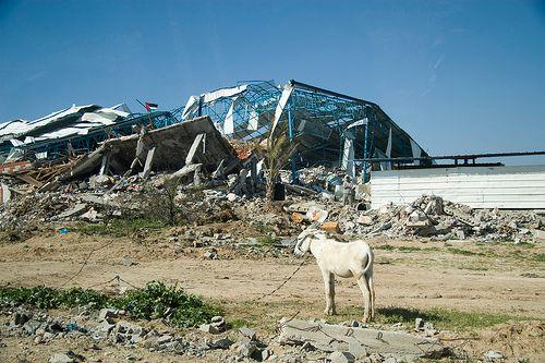 Bâtiment détruit Palestine