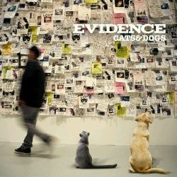 Evidence Cats & Dogs