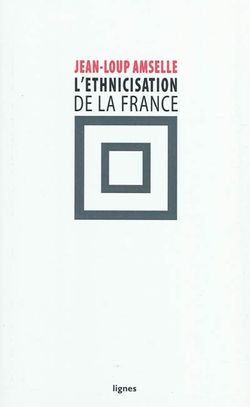 L'ethnicisation de la France