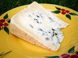 Bleu des Causses (AOP)