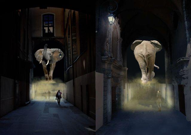 Elephantastic - Passage Menestrier - Mathilde Leca et Catherine Garret