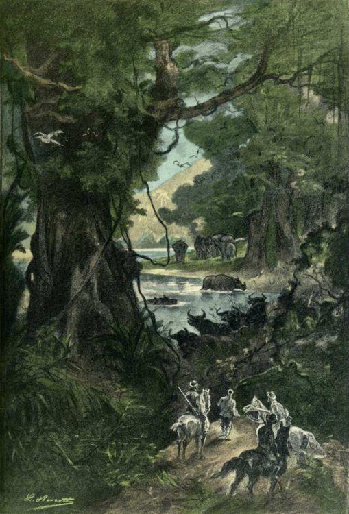 """Illustration de """"L'étoile du sud"""" par Léon Benett - 1884"""