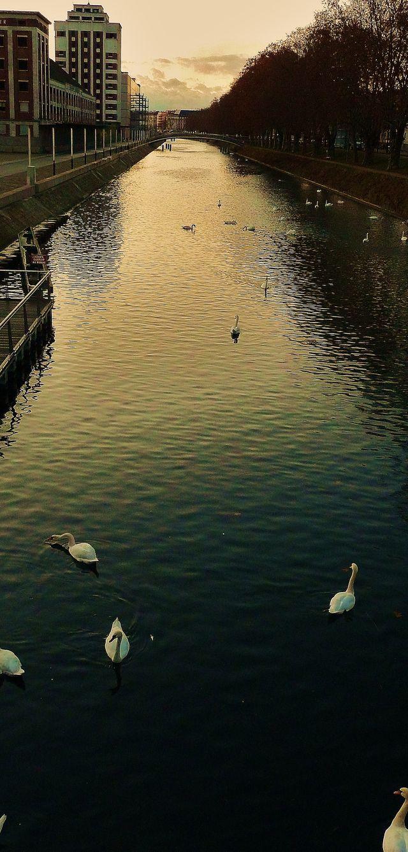 Strasbourg vue d'un pont @F. Roumat.JPG