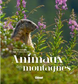 animaux de montagnes couv livre