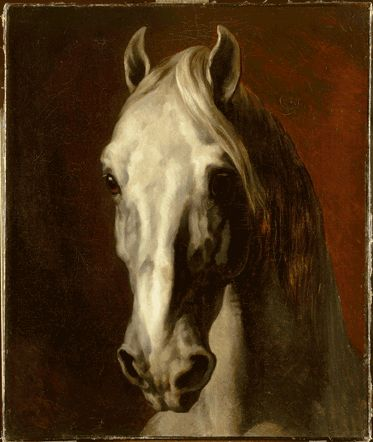 Tête de cheval blanc avant 1816-1817, Théodore Gericault