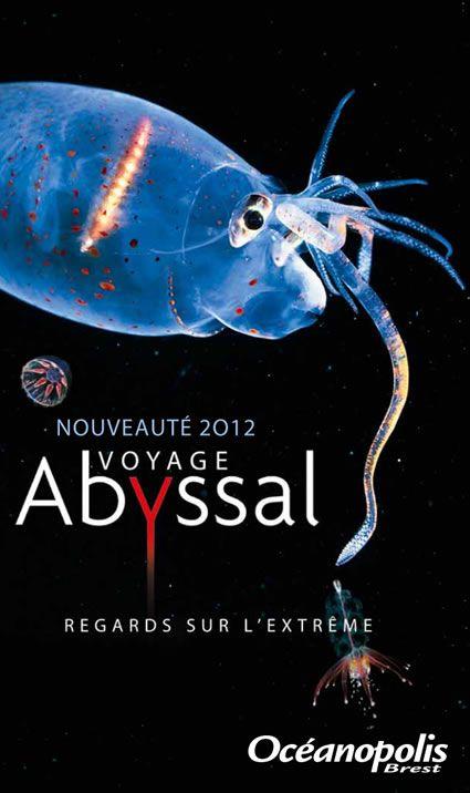 Océanopolis Brest - AbyssBox