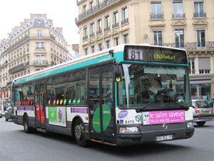 bus 81