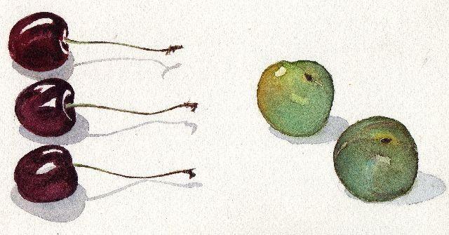 Aquarelle fruits