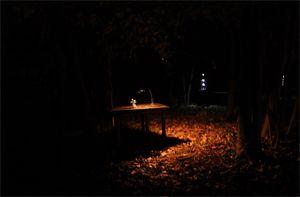 """Image """"Le silence du monde"""" - Etienne Saglio"""