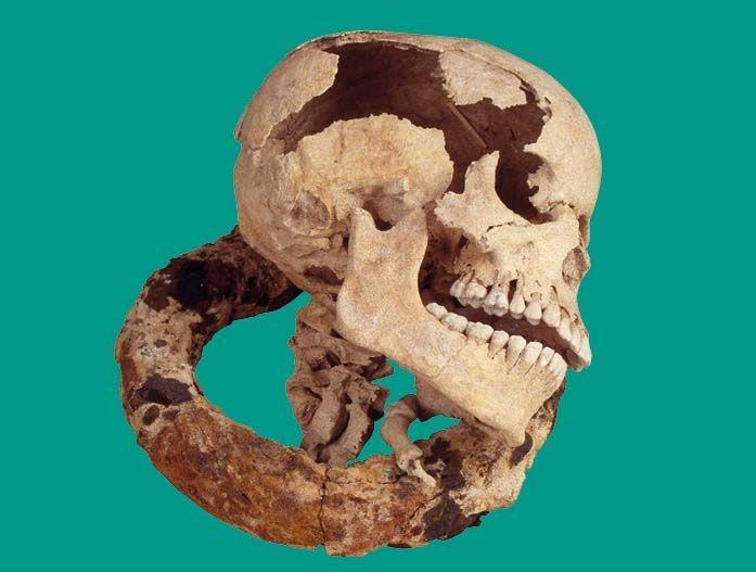carcan de punition et crâne, provenant de la sépulture d'esclave découverte sur la plage des Raisins clairs, en Guadeloupe