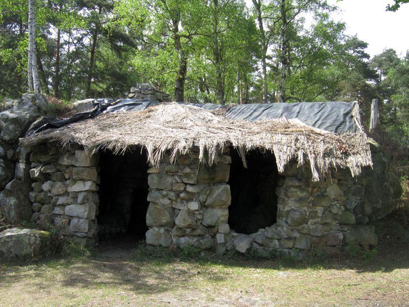 la cabane, lieu de méditation de Rousseau
