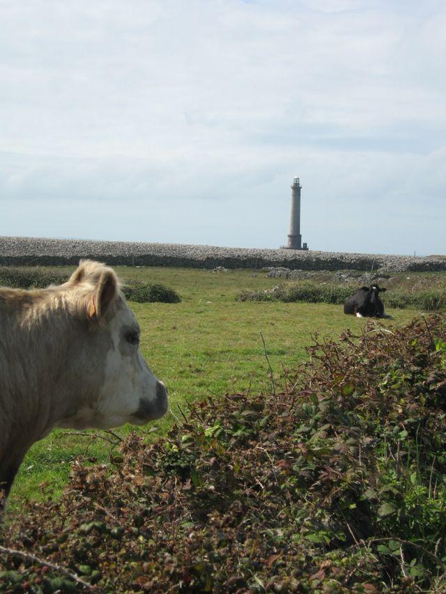 Goury4, Cotentin