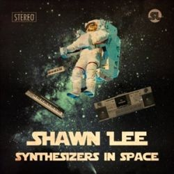Shwan Lee Synthesizers In Space