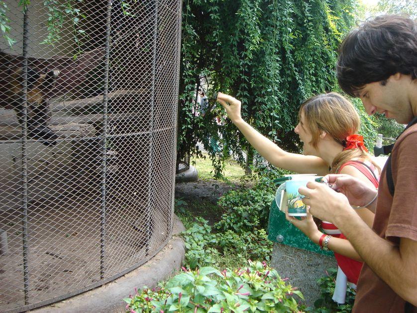 Zoo de Bueno-Aires