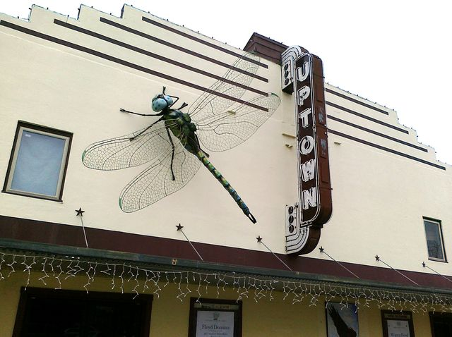 Uptown Dragonfly (Libellule d'Uptown)