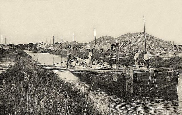 Chargement des péniches en sel à Aigues-Mortes au début du XXe siècle