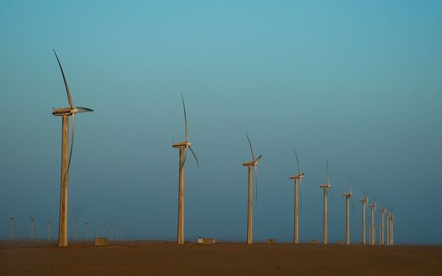 Éoliennes à l'aube (Wind turbines at dawn)