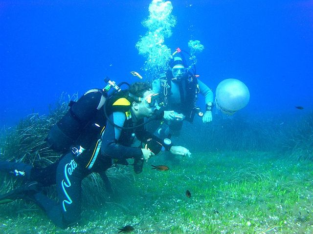 Plongée sous-marine - Scuba diving in Elba island, Italy