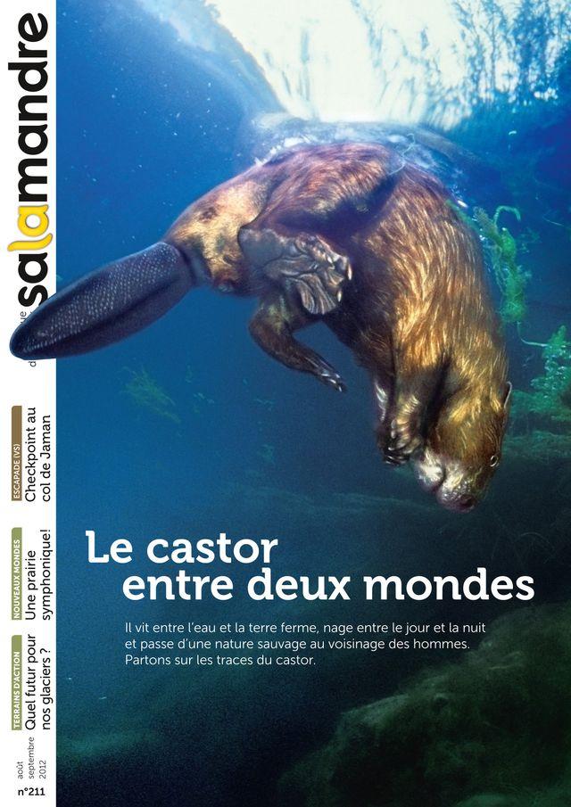 La revue La Salamandre