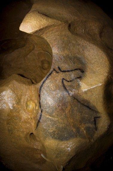 Cheval de la Grotte de Mayenne-Sciences, Mayenne époque gravettienne