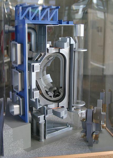 Coupe du tokamak ITER