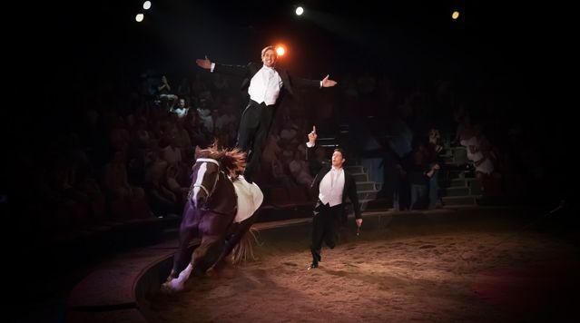 Cirque Alexis Gruss - Ellipse