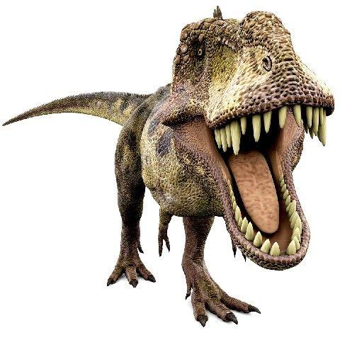 Dinosaure - Tyrex