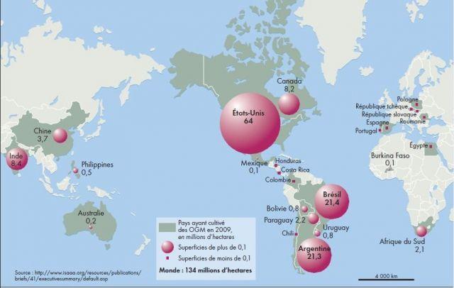 Carte des OGM dans le monde