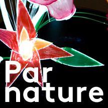 Affiche de l'exposition Par Nature