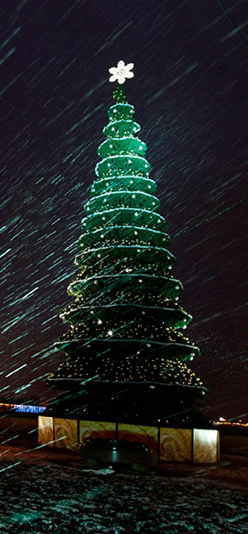 Sapin de Noël illuminé