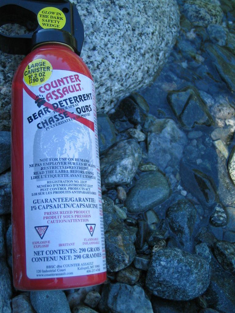 l'accessoire indispensable- Bear spray