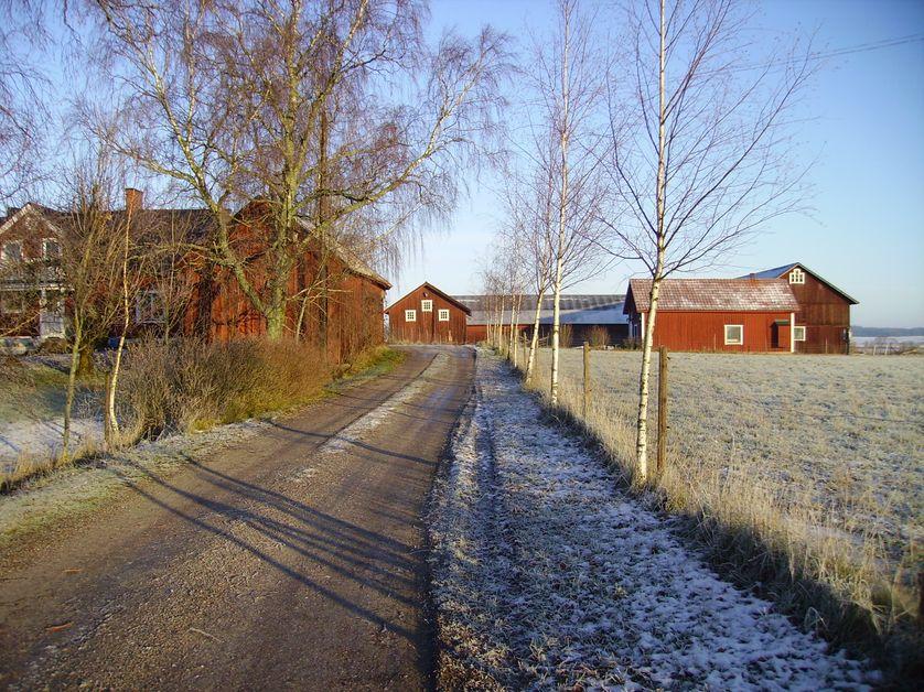 Exploitation caprine (Vallgarns Gardsmejeri), région de Stockholm