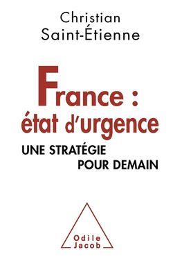 France : état d'urgence. Une stratégie pour demain