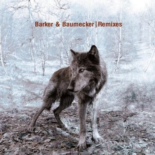 barker baumecker remixes