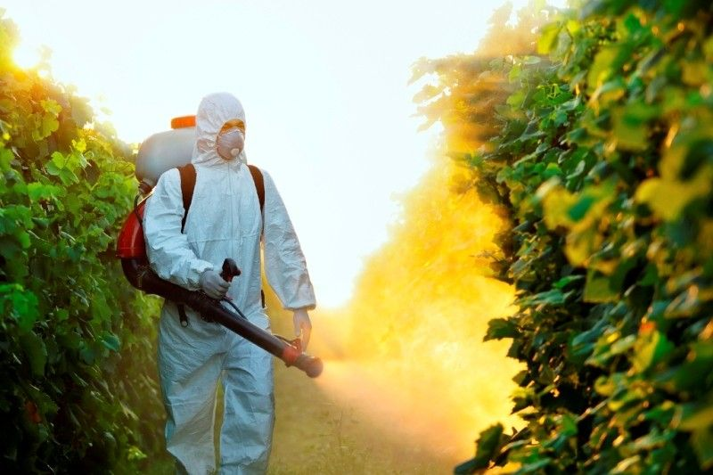 Alerte aux pesticides