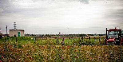 les champs de Xavier Dupuis devant un capatage d'eau