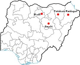 Location of the four cities in north eastern Nigeria where the Boko Haram conflict took place