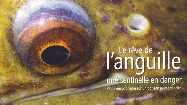 Le rêve de l'anguille - auteur : Eric Feunteun - France Bleu Armorique