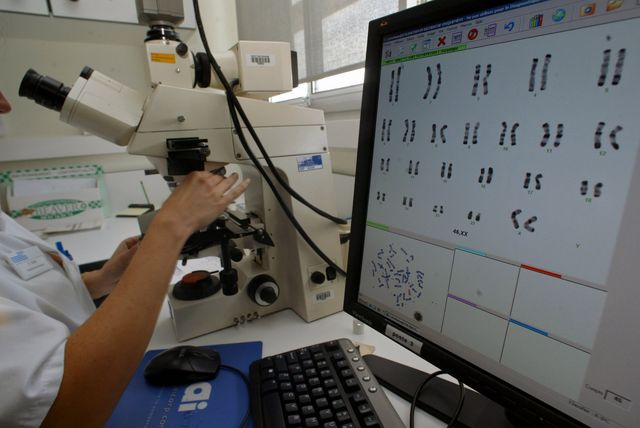 Des athlètes féminines possédaient un chromosome Y