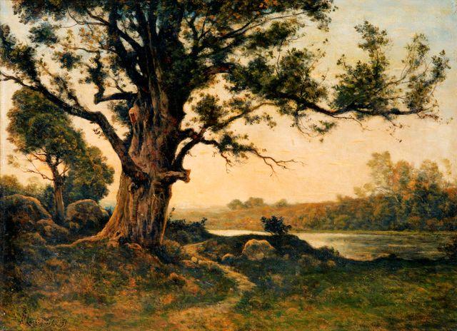 Le vieux Chêne - Huile sur toile de Henri Harpignies - 1895